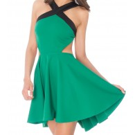 Women Dress Green Skater