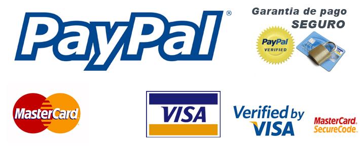 pago paypal seguro
